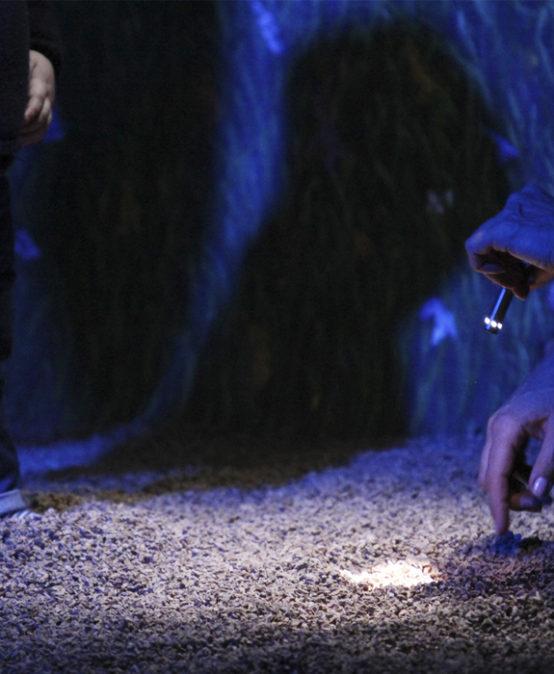 TEATRE: TOTS A ESCENA! Jardín secreto, de Zig Zag Danza (Astúries)