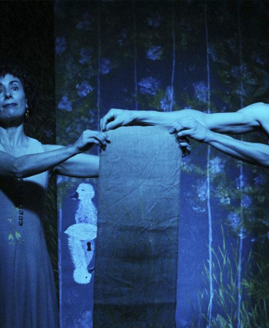 TEATRO: ¡TODOS A ESCENA! Jardín secreto, de Zig Zag Danza (Astúrias)