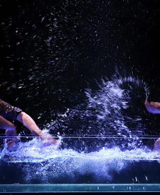 RRRR! Festival d'Art i Reciclatge: Nautilus, Cia. La Negra (València)